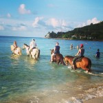 Horseback Riding on the Beach St Croix